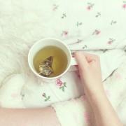 いつも頑張っているあの人に、ささやかな「お茶のプチギフト」はいかが?