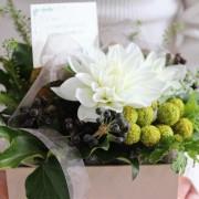 敬老の日に贈るお花16選。「長生きしてね」を伝える幸せフラワーギフト特集