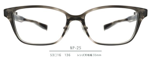 NP-25 series