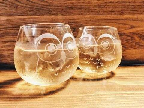 Fukurou Glass 2pcs